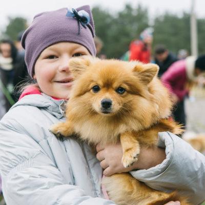 Собака обнимака